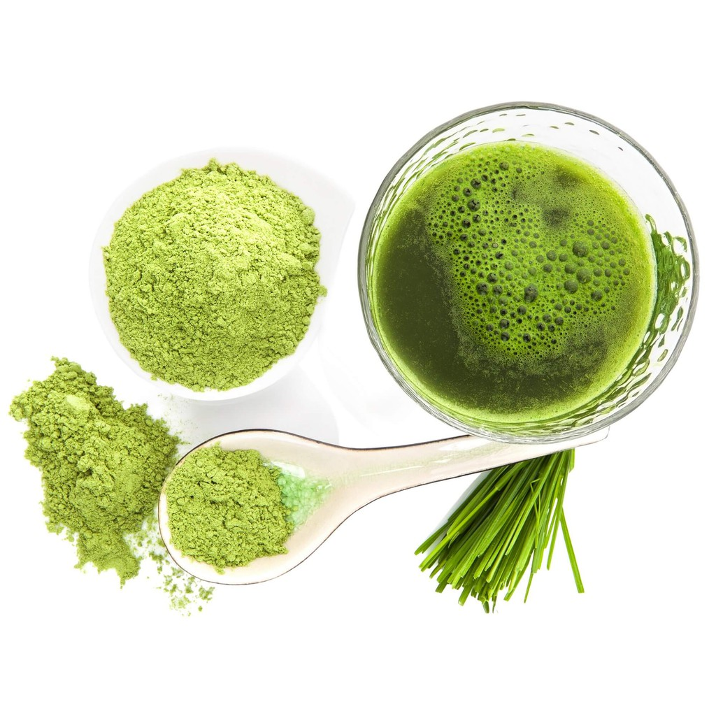 Food Ingredients First | Allmicroalgae Prepares for Large Scale Production of Algae-Based Omega-3