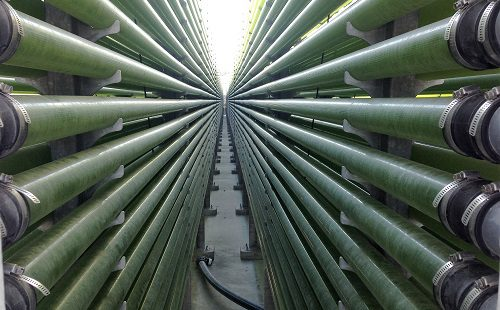 Jornal de Economia do Mar | Algafarm entra em nova fase industrial