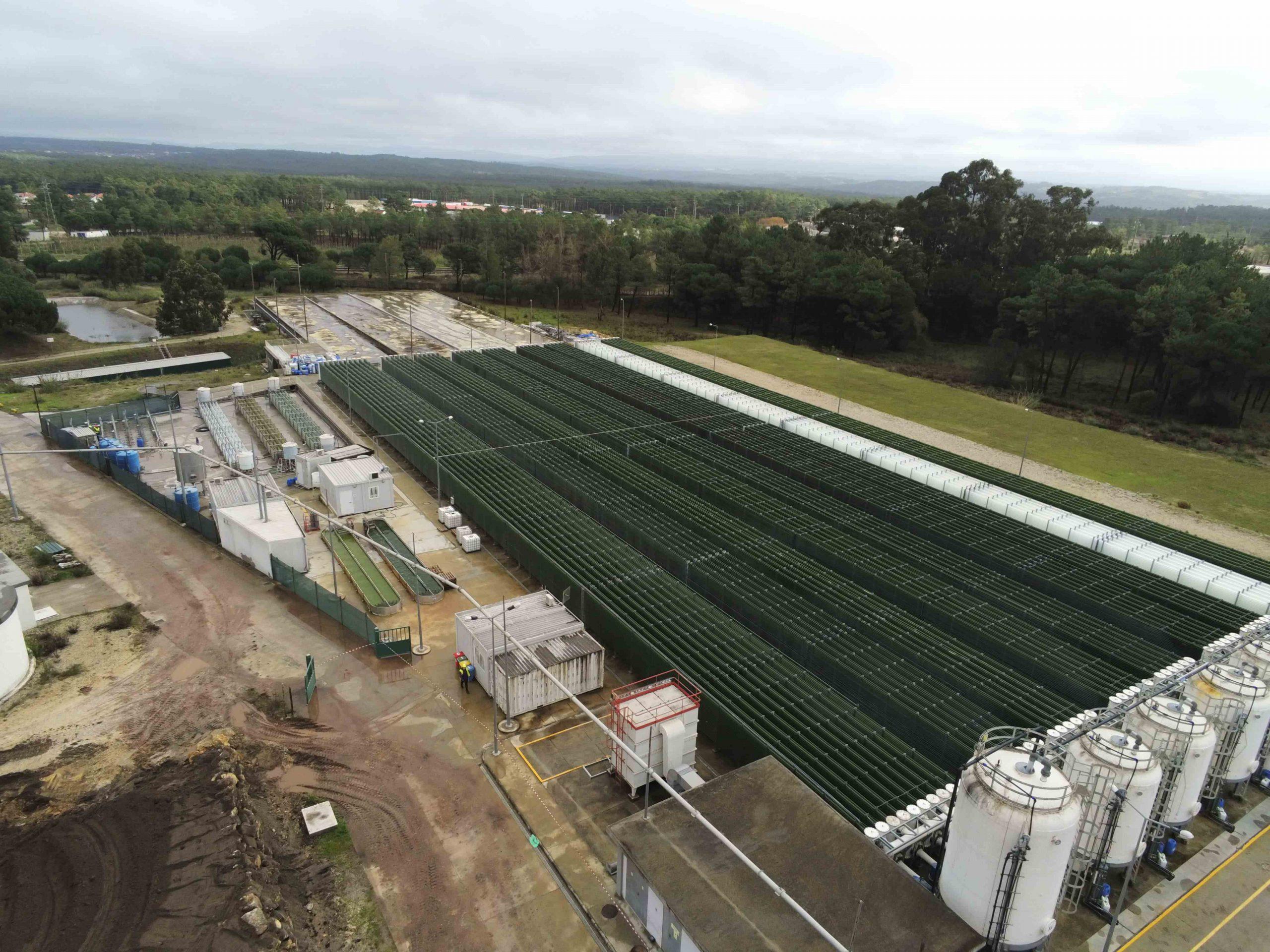 COMPETE 2020 | ALGAVALOR – a produção integrada de microalgas e a valorização da sua biomassa em diferentes aplicações